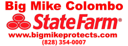 Big Mike State Farm